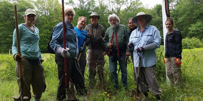 Trail Maintenance Work & Play at Corman AMC Harriman Outdoor Center