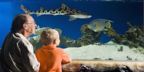 Austin Aquarium tickets