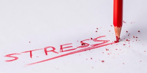 Coping With Stress - Wellbeing Workshop