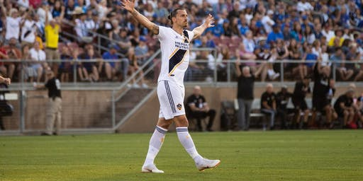 LA Galaxy Soccer