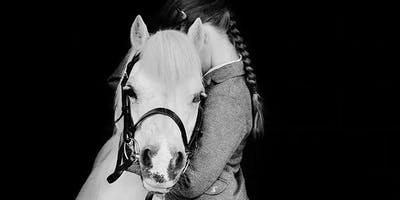 Equine Photography by Hannah Freeland