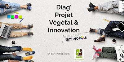 Diag%27+Projet+V%C3%A9g%C3%A9tal+%26+Innovation