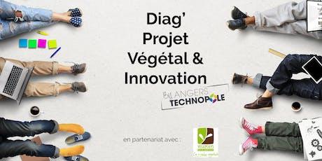 Diag' Projet Végétal & Innovation  billets
