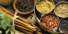 Seasonal Change - The ancient art of Ayurveda