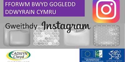 Instagram Workshop : Gweithdy Instagram