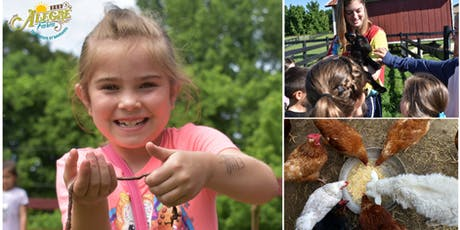 Summer Fun at Farm Adventure Day tickets