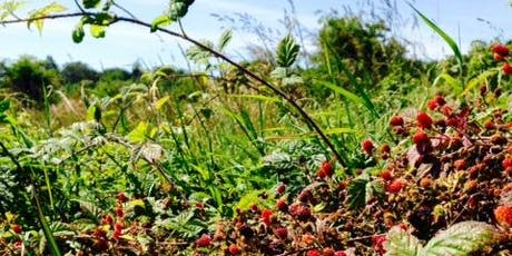 Trailing Blackberry Forage Trip & more tickets