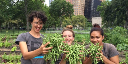 Workshop at The Battery: Vegetable Gardening (and Eating!) with Kids