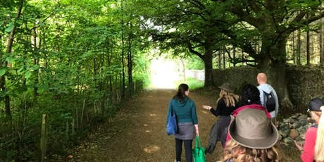 Forest Bathing - Wanders for well-being - Summer Saunters tickets