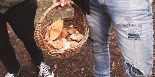 Guided mushroom forage