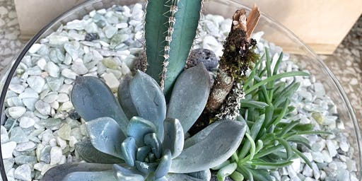 Cactus and Succulent Workshop