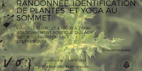Rando, identification de plantes et yoga au sommet billets