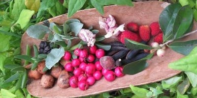 Local Wild Plants as Food and Medicine Workshop
