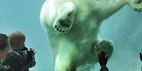 Rotterdam Zoo (Diergaarde Blijdorp): Skip The Line tickets