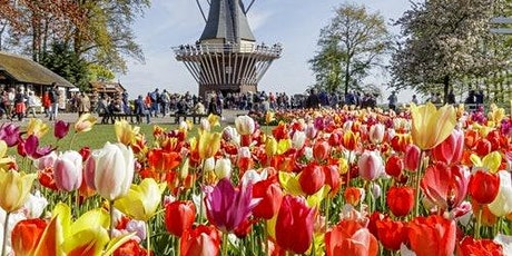 Keukenhof: Skip The Line tickets