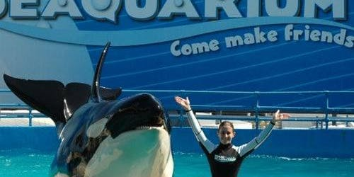 Miami Seaquarium: Skip The Line