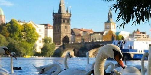 1-Hour River Cruise + Audio Guide (Prague)