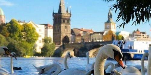 1-Hour River Cruise + Audio Guide (Prague)