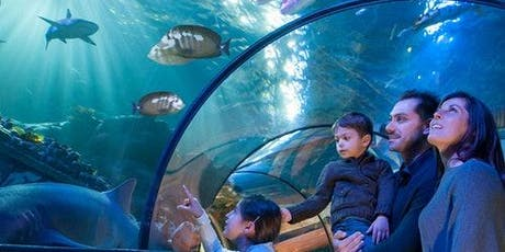 Gardaland SEA LIFE Aquarium biglietti