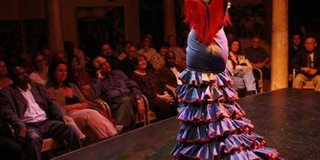 Flamenco Dance Museum - Museum & Show entradas