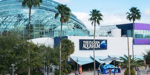 The Florida Aquarium: Skip The Line