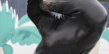 New York Aquarium tickets