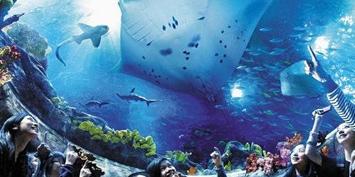 Ocean Park Hong Kong: Skip The Line