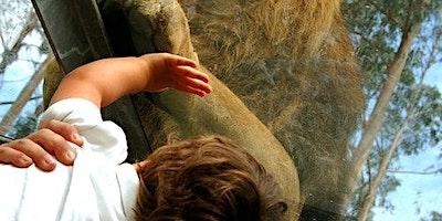 Zoo Santo Inácio: Skip The Line