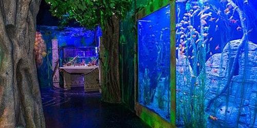 SEA LIFE Orlando & Madame Tussauds Combo