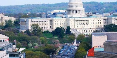 Washington, D.C.: Day Trip from New York