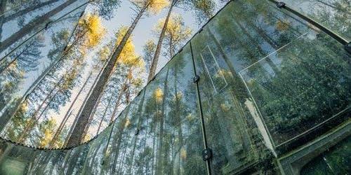 Liubavas Manor-Museum & Europos Parkas: Combo Ticket