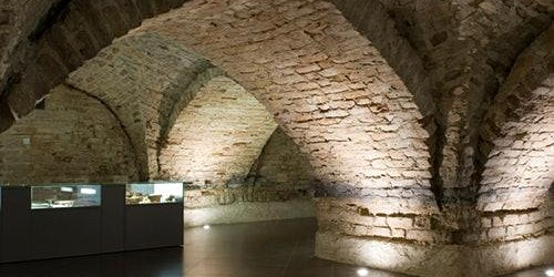 Crypts of Vilnius Cathedral: Guided Tour