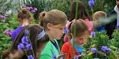 Meise Botanic Garden tickets