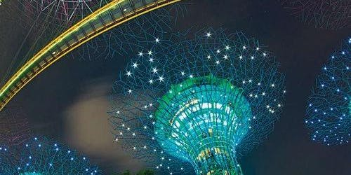 Gardens By The Bay & OCBC Skyway