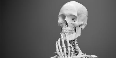 Skeletons - July School Holidays - Osborne Library