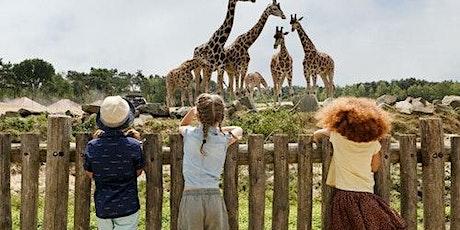 Safaripark Beekse Bergen tickets