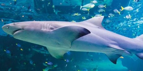 SEA LIFE Manchester tickets