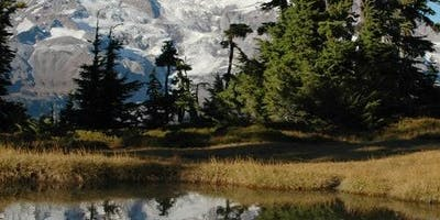 Mt. Rainier: All-Inclusive Small-Group Day Trip from Seattle