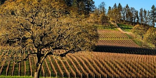 Willamette Valley: All-Inclusive Day Trip from Portland