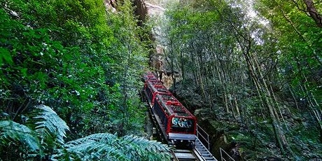 Blue Mountains Hop-on Hop-off Explorer Bus + Scenic World Unlimited Rides Pass tickets