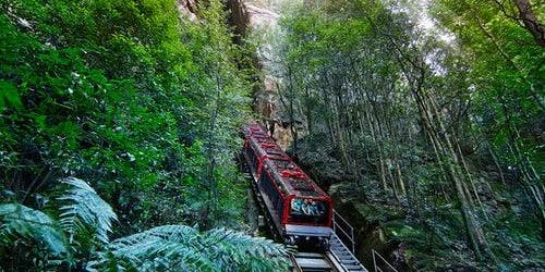 Blue Mountains Hop-on Hop-off Explorer Bus + Scenic World Unlimited Rides Pass