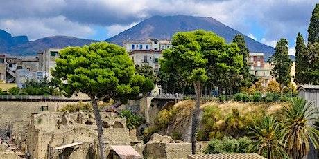 Vesuvius & Herculaneum Card biglietti