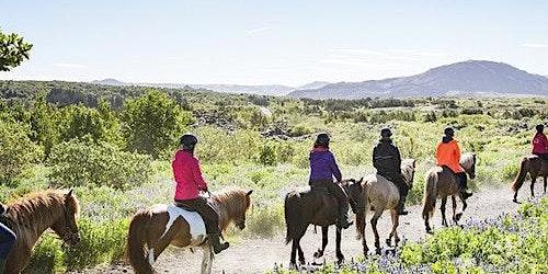 Horseback Riding with Icelandic Horses through the Lava Fields of Hafnarfjörður