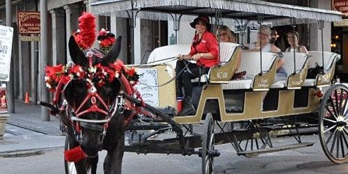 French Quarter by Mule Drawn Carriage: 60-Minute Tour