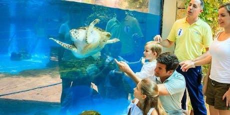 Palma Aquarium: Skip The Line tickets