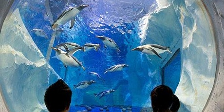 SEA LIFE Birmingham tickets
