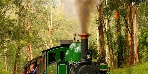 Puffing Billy Railway: Half Day Morning Tour from Melbourne