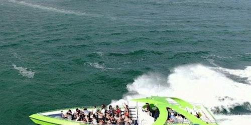 Thriller Miami Hurricane Speedboat Ride