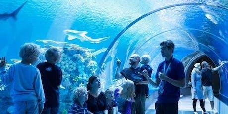 Hop-on Hop-off Bus 72H & Blue Planet Aquarium tickets