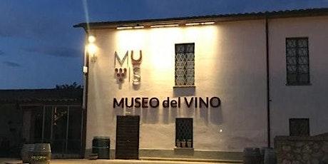 Wine Museum MUVIS biglietti